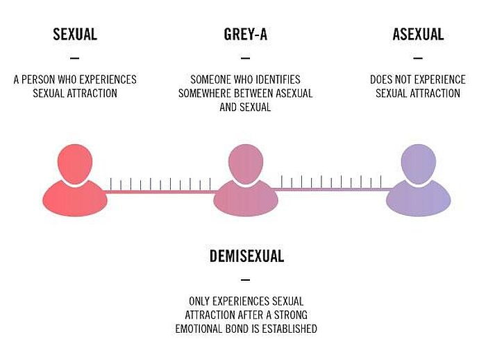 Asexual demisexual test